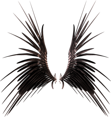 PSD Detail | A set of 3D Wings High Res | Official PSDs