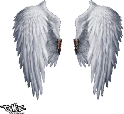 Angel Wings PNG http://officialpsds.com/Angel Wings HQ PSD73545.html