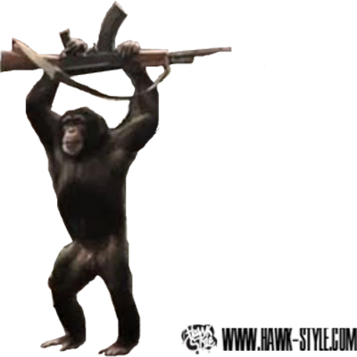 Скачать игровые автоматы обезьянка  Слоты играть