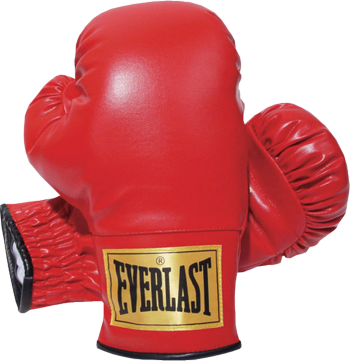 Everlast Boxing Gloves | PSD Detail
