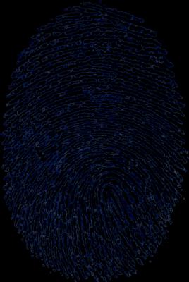 Fingerprint скачать - фото 10