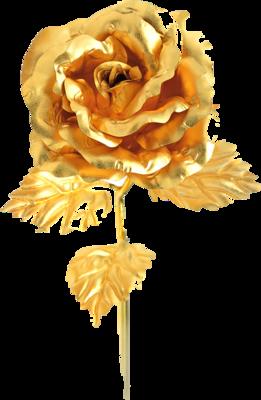 PSD Detail  Gold Rose  Official PSDs