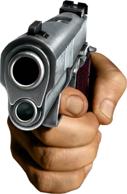 Have you ever had a gun pointed at you?