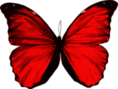 PSD Detail | Red Butterfly | Official PSDs