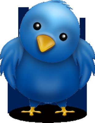 Twitter Twitter-Bird-3-psd31850