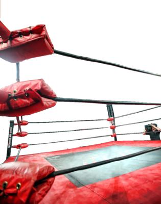 Pro wrestling dating sites