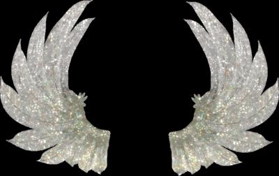 angel wings psd - photo #13